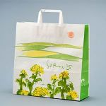 春/菜の花と田園風景